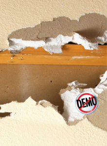 no demo mold removal melbourne