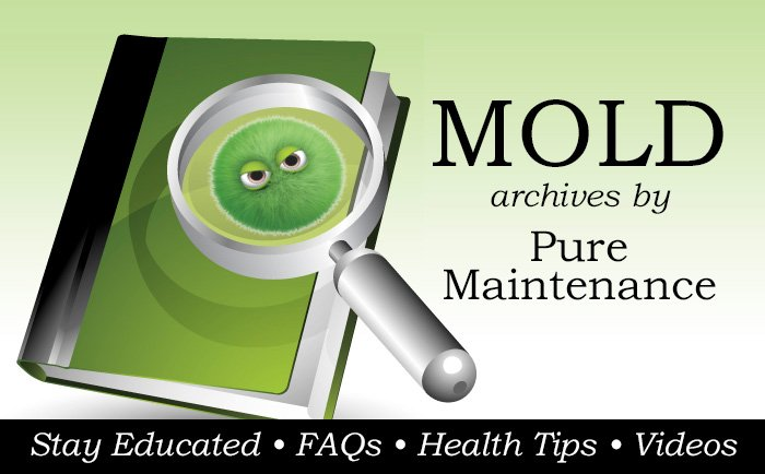 mold archives pure maintenance