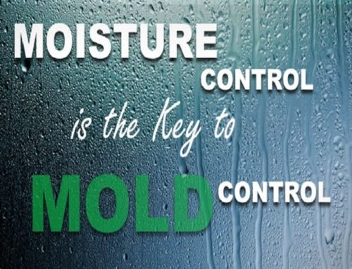 Home + HVAC Dry Fog Mold Remediation
